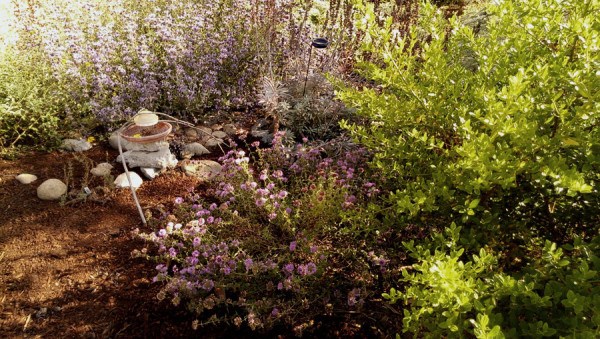 Dinata Garden